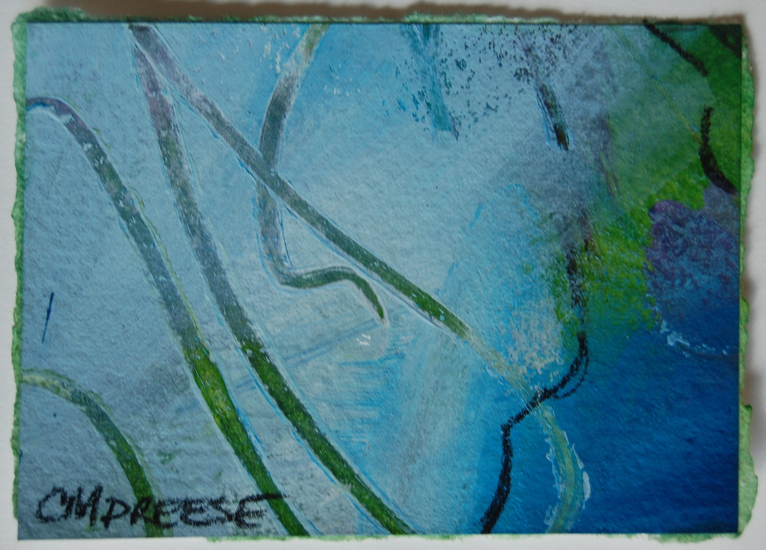 Aceo New Art Cards Are Now Available On Etsy Dreese Fine Art