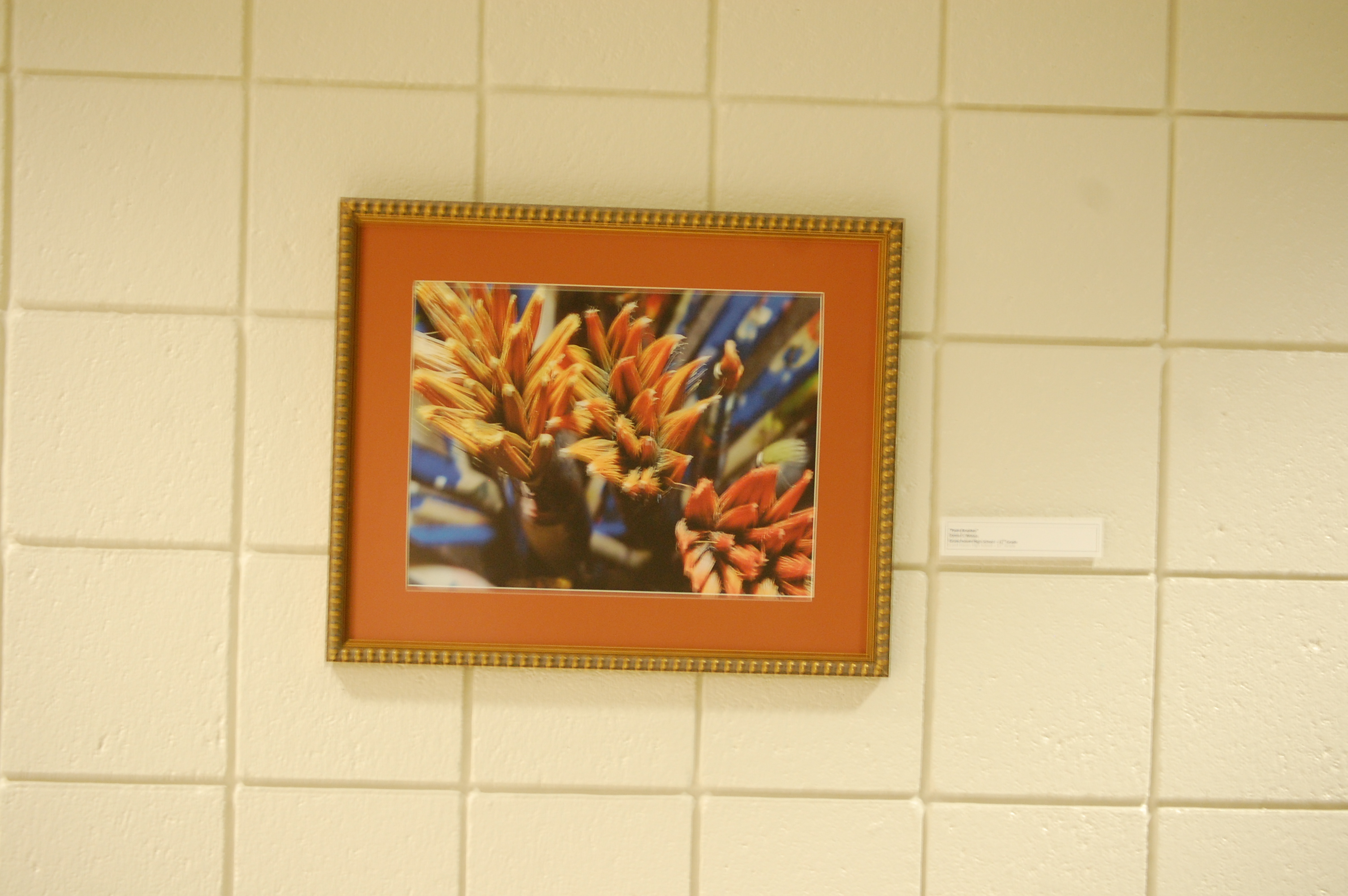 OAISD Images Framing Completed and Hung – Dreese Fine Art & Framing